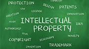 India intellectual property rights investigator